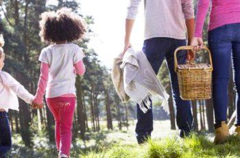 Cosas gratis para hacer en familia en tu viaje a Washington DC