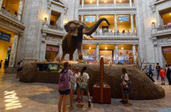 Museos que no puedes dejar de visitar en Washington